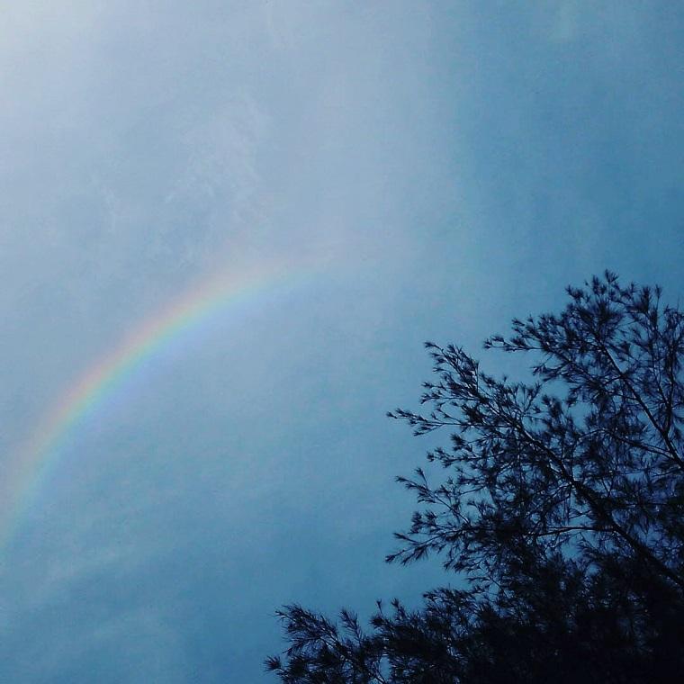 <虹の写真>~前編~ 読みもの
